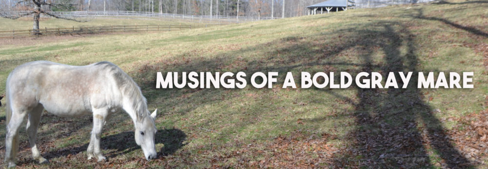 Musings of a Bold Gray Mare